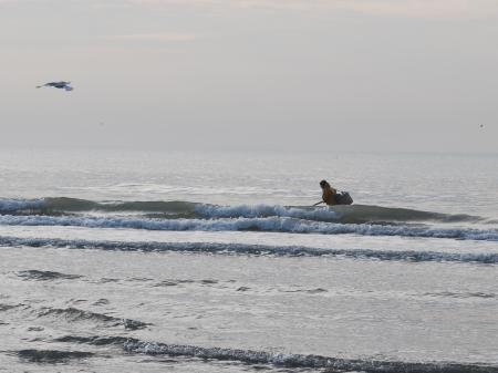 solitude du pêcheur à pied