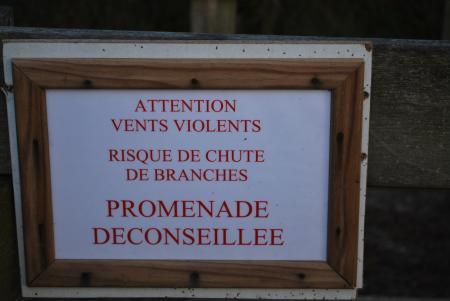Le Mont St Frieux