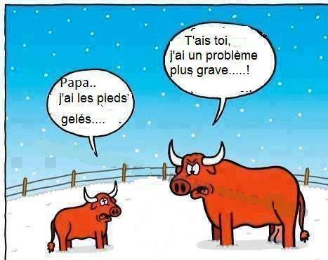 humour2.jpg